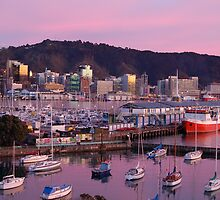 Windy Wellington by euee
