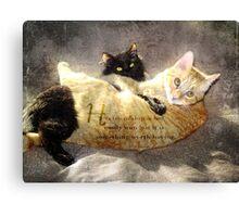 cat quote-friendship Canvas Print