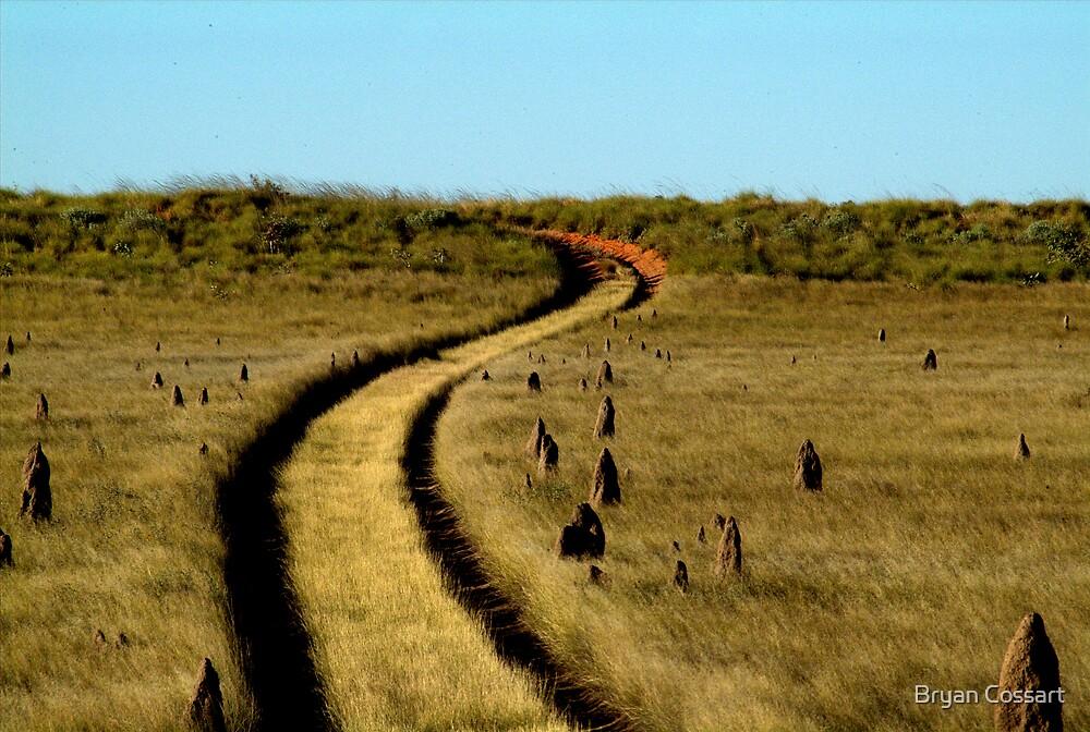 Termite Road by Bryan Cossart