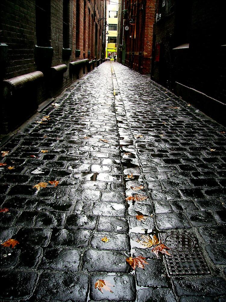 cobble stones by Leesa Habener