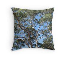 Eucalypus Gum Trees in the centre of Melbourne Australia Throw Pillow