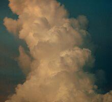 Thunderhead by Matthias Ceconi