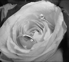 Wedding Ring by saramathews