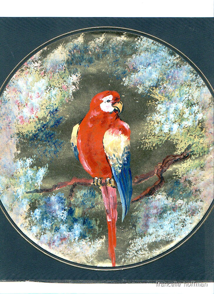 parrot fantasy by francelle  huffman