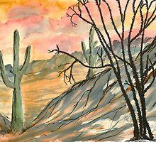 Arizona Evening by derekmccrea