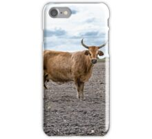 Thats no Bull iPhone Case/Skin