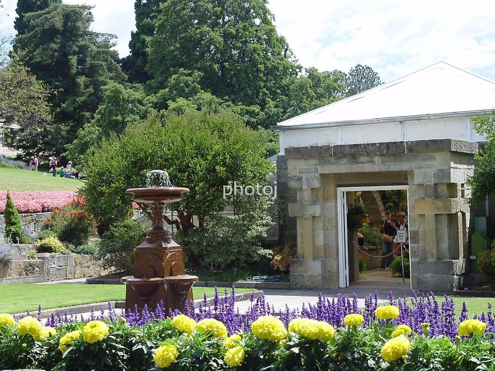 australia-tasmania hobart botanical gardens by photoj