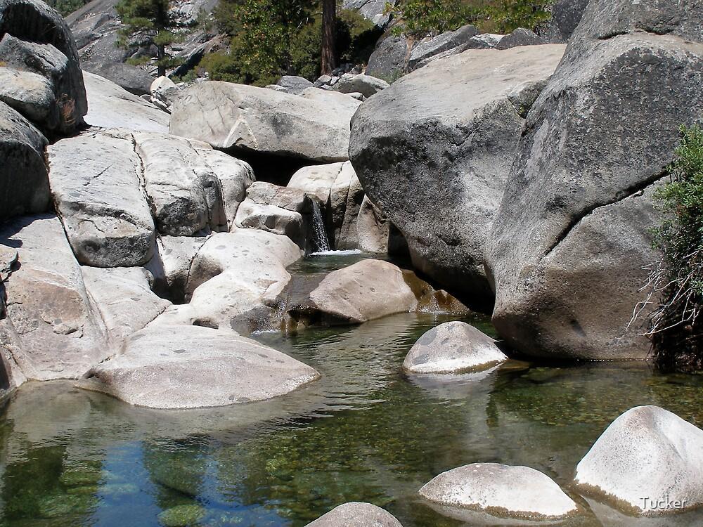 Dinkey Creek, CA 2007 by Tucker