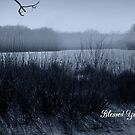 Blessed Yule by WildThingPhotos