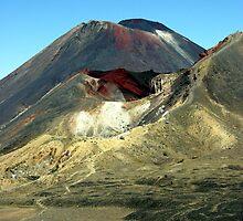 Mount Ngauruhoe - New Zealand by Danielle Kennedy Boyd