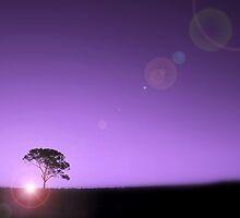 Before The Dawn by Craig Shillington