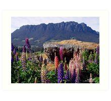 photoj australia-tasmania, Mt Roland Art Print