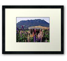 photoj australia-tasmania, Mt Roland Framed Print
