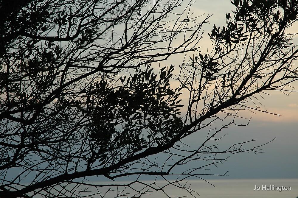 Vista by Jo Hallington