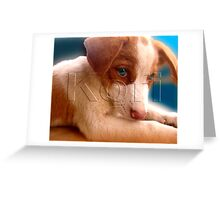 Dirty Lola Greeting Card