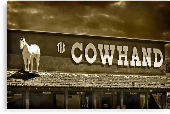 'Cowhand' Colorado. by Melinda Kerr
