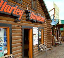 Harley Davidson shop-Denali,Alaska by drewster