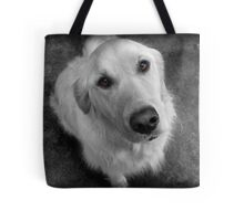 Please Give Me A Biscuit Tote Bag