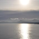 a foggy sunrise from killiney, eire by gary roberts