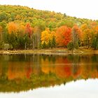 Autumn Reflection Panoramic View by Vicki Spindler (VHS Photography)