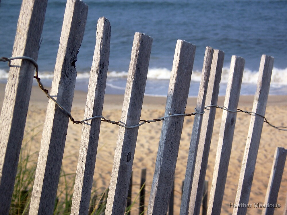 Outer Banks by Heather Meadows