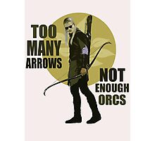 Too Many Arrows - Not Enough Orcs Photographic Print