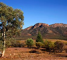 Outback Australia the Flinders Ranges by jwwallace