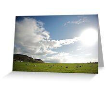 Icelandic Pasture Greeting Card