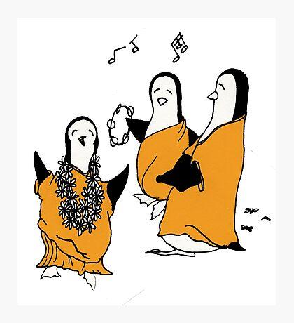 Hare Krishna Penguins Photographic Print