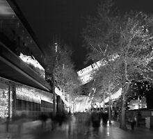 Southbank & Jeff's shed BW by DavidsArt