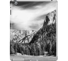 Dolomite Farm BW iPad Case/Skin