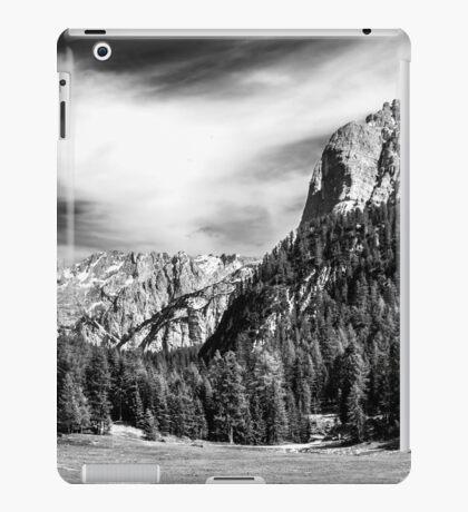 Dolomite Farm BW iPad Case/Skin