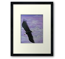 Loan eagle in flight Framed Print