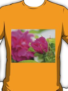 """""""Let the beauty and fragrance of a rose touch your soul."""" T-Shirt"""