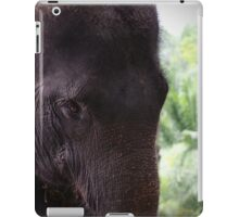 Elephant portrait 1 iPad Case/Skin