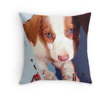 Sweet Lola Throw Pillow