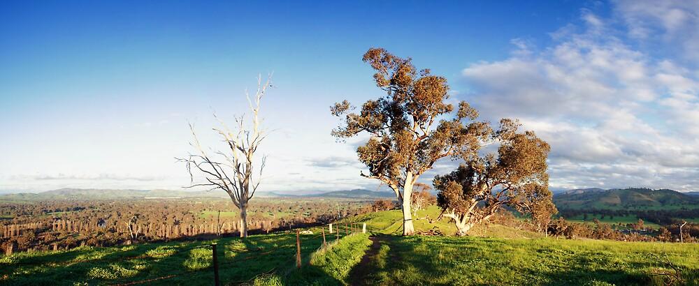 My Australia by David Haviland