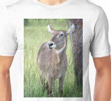 Female Waterbuck Unisex T-Shirt