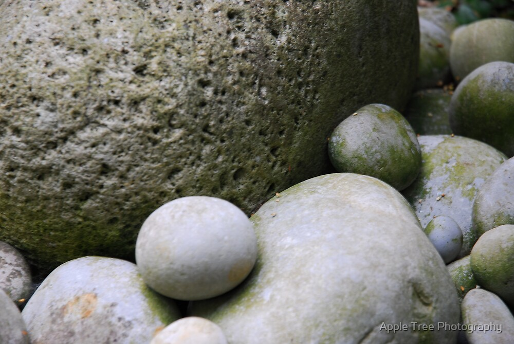 Stones by Apple Tree Photography