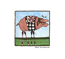 Stilt pig Photographic Print