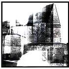 The Lunatic Asylum by alistair mcbride