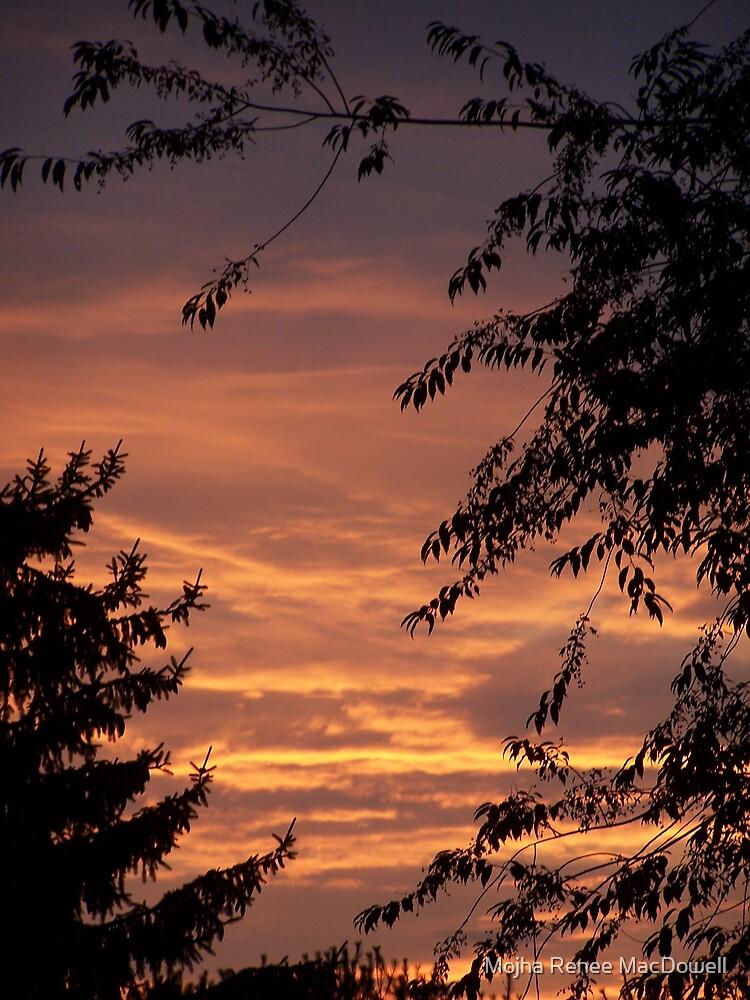 Enchanted Sunset by Mojha Renee MacDowell