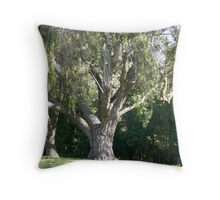 Just a beautiful old tree!!! Throw Pillow