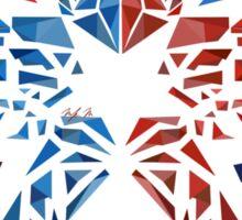 Second Son Insignia Sticker