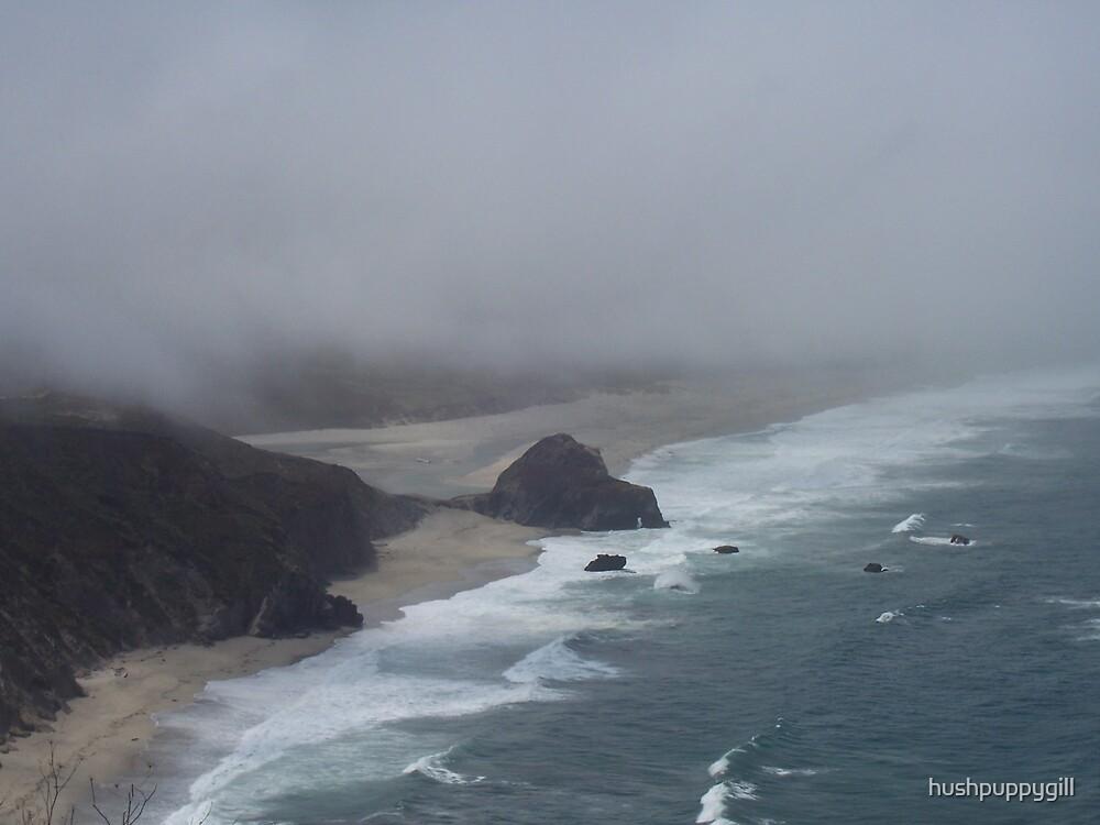 My Beautiful Big Sur by hushpuppygill