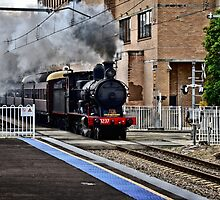 Steam Engine 3237 - The Last Ride Out of Newcastle NSW by Phil Woodman