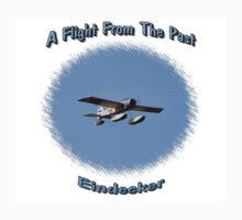 A Flight From The Past by Jim Davis