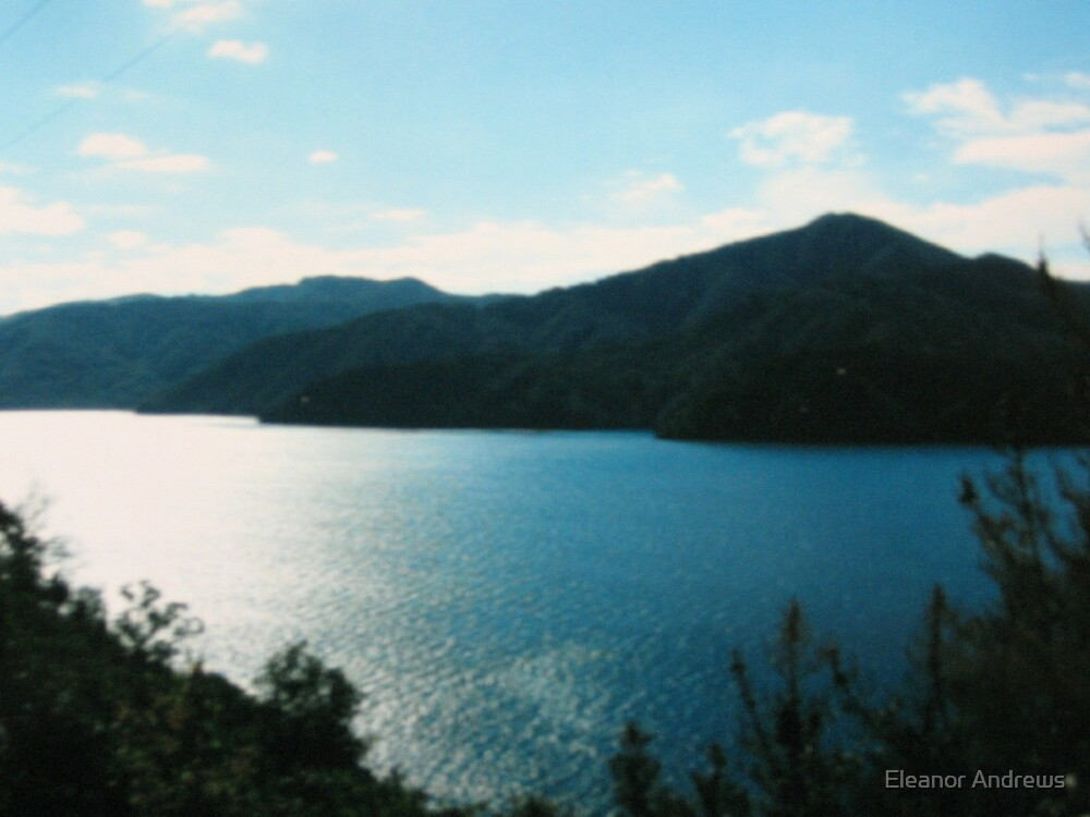 Marlborough Sounds by Eleanor Andrews