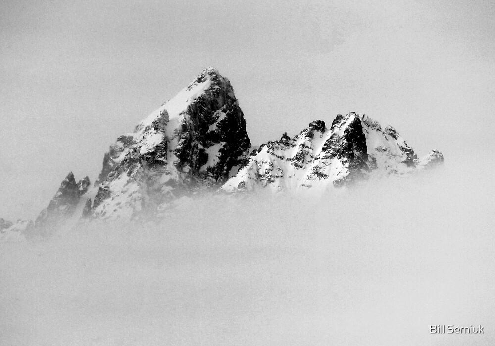 Tetons-Storm by Bill Serniuk