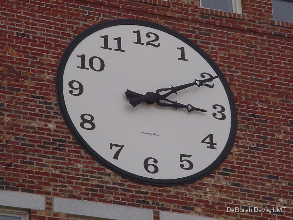 Time Don't Stand Still by DeBorah Davis, LMT